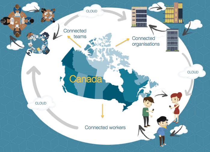 Infographic : Script&Go's Canadian Response